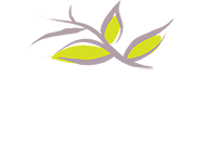 Missouri Hospice & Palliative Care Association - Jefferson City, MO